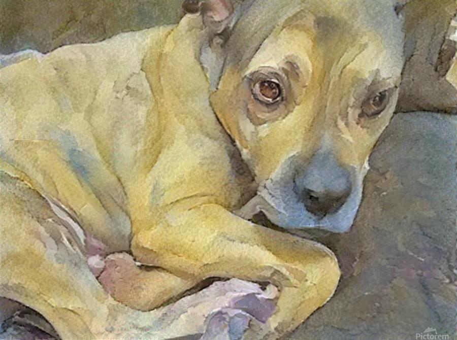 Watercolor dog painting  Print