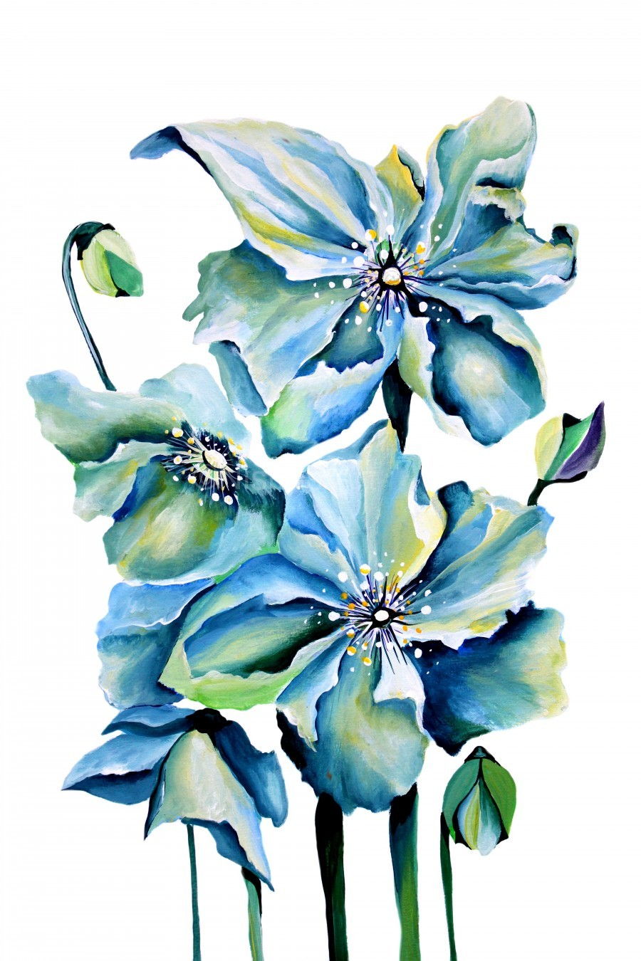 Blue Poppies Watercolor  Print