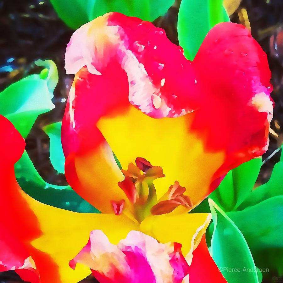 heart flower  Print
