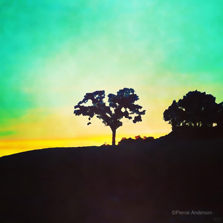 hill tree  Print