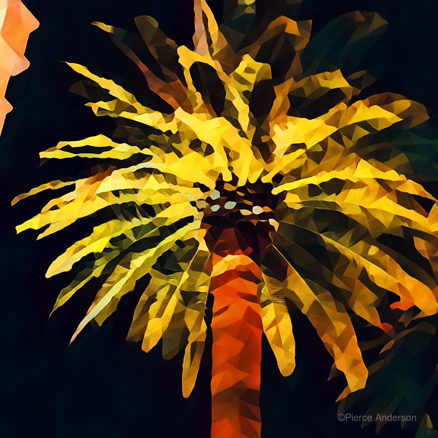 las vegas palm tree at night  Print