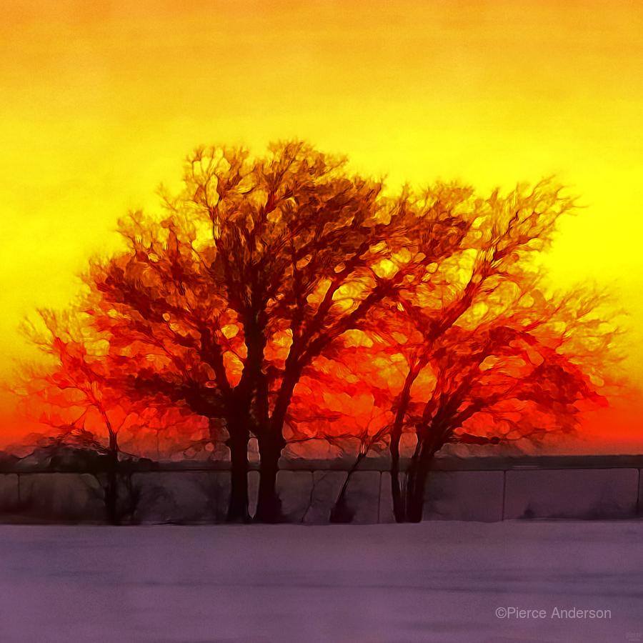 snowy evening  Print