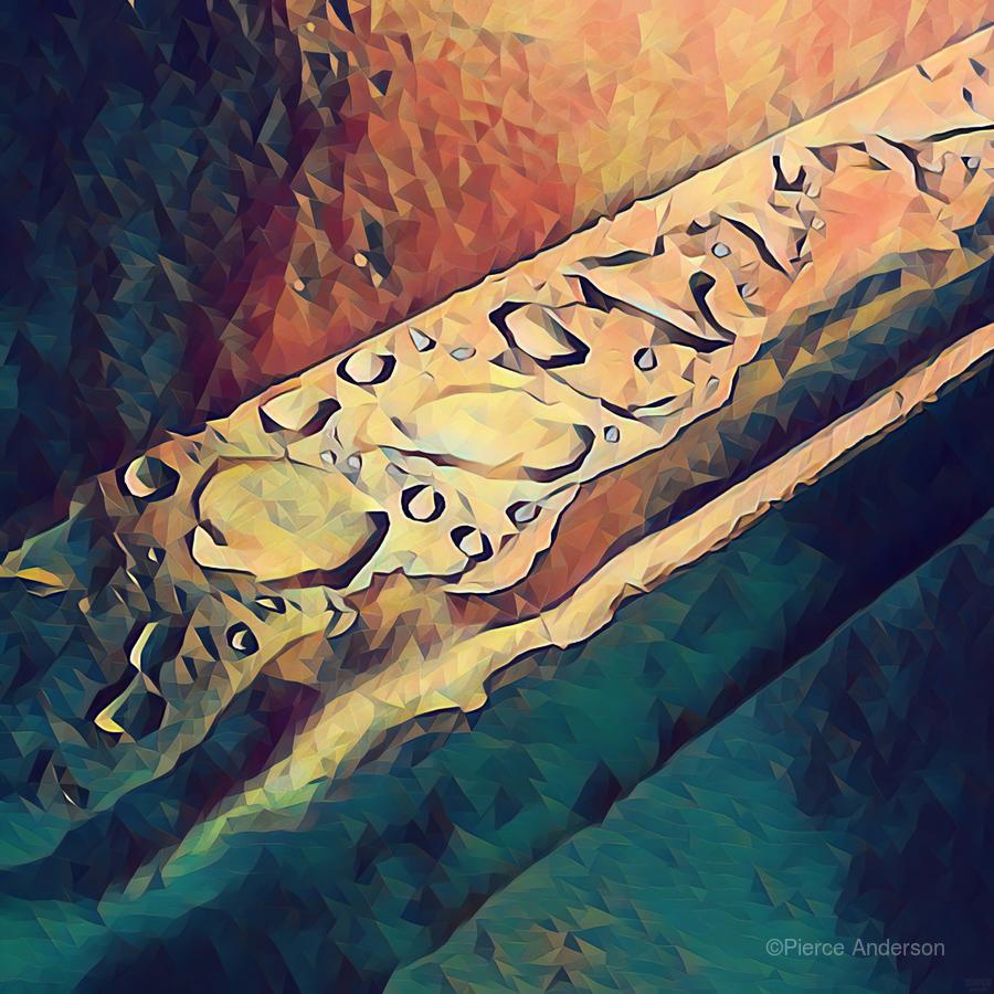 Water Drops  Print