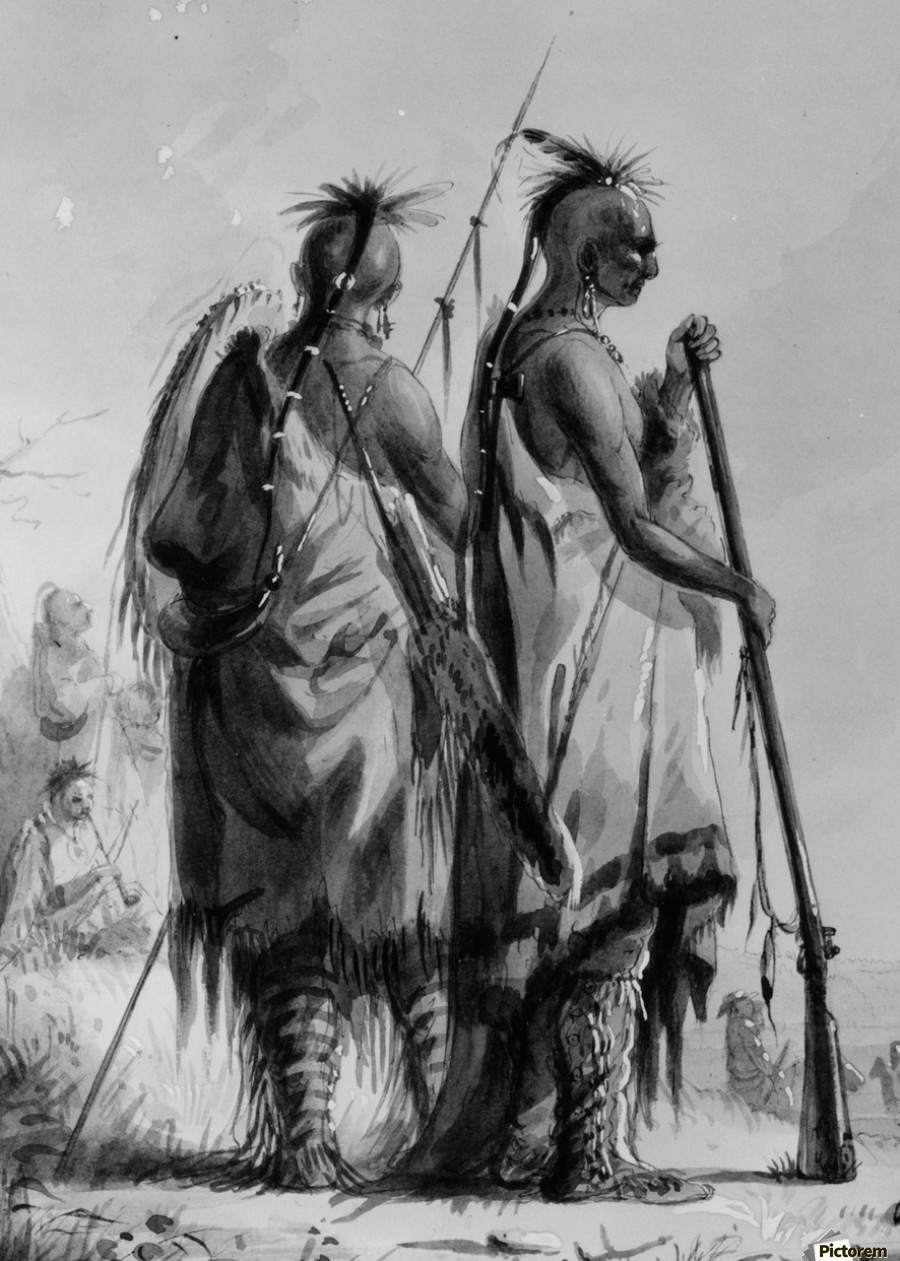 Plains Indian Shields  Print