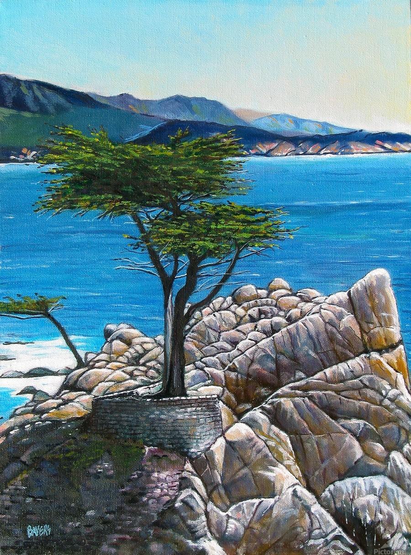 Lone Tree at Pebble Beach  Print