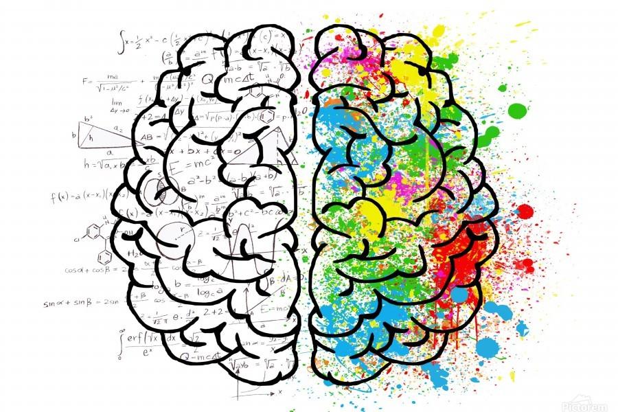 brain mind psychology idea drawing  Print