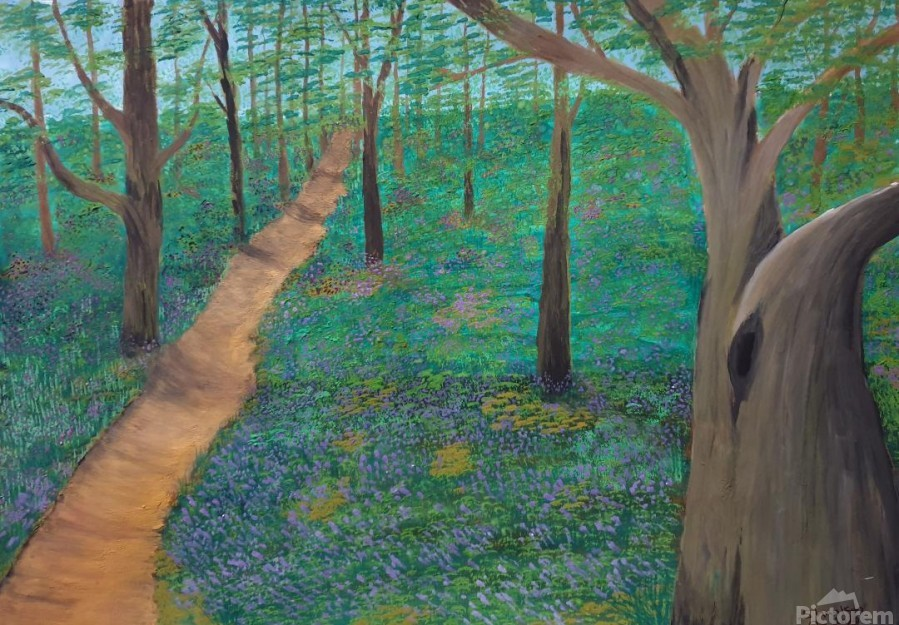 Bluebell woods oxford  Print