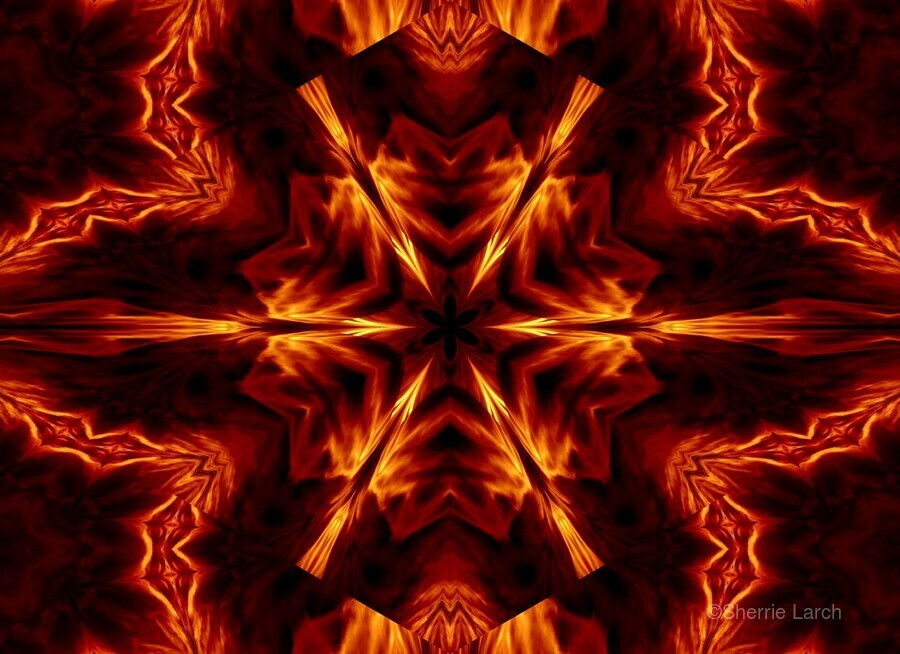 Eternal Flame Flowers 1  Print
