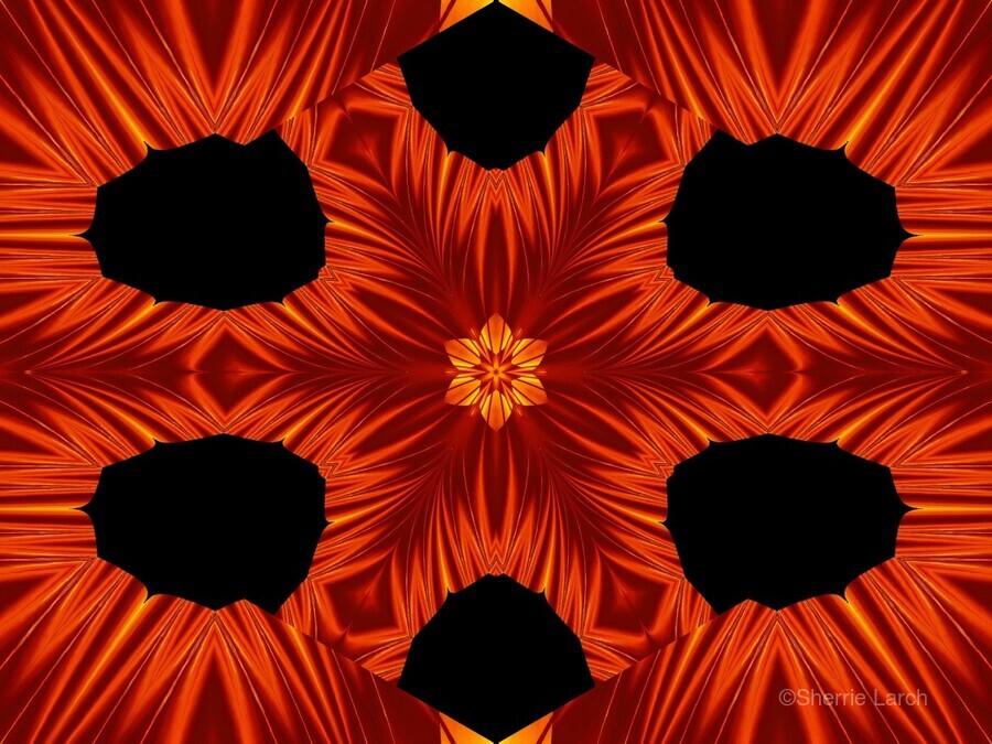 Fire Flowers 105  Print