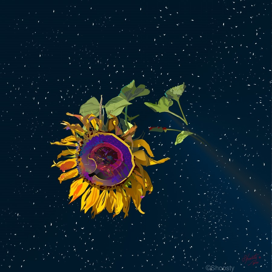 Sunflower in Space  Print