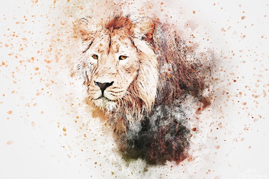 lionss  Print