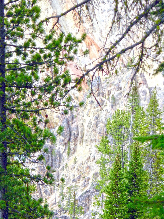 Mighty Yellowstone 4  Print