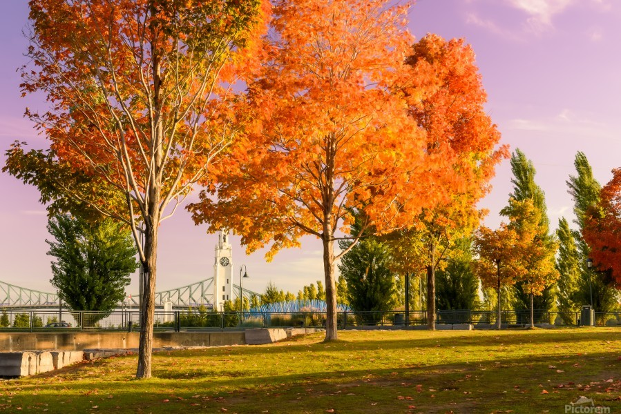 Autumn In The Old Port Of Montreal  Print