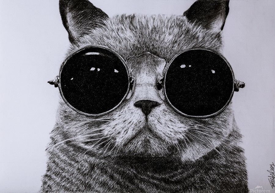 The Cat with glasses  Print