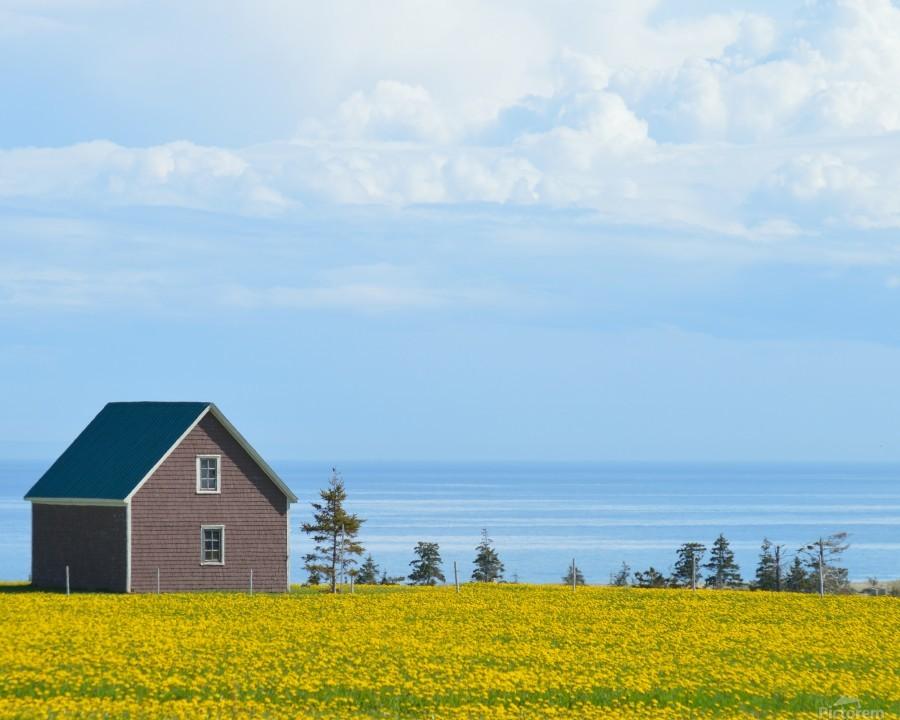 Prince Edward Island landscape  Imprimer