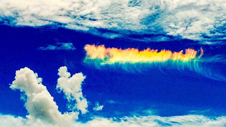 Follow the rainbow   Imprimer