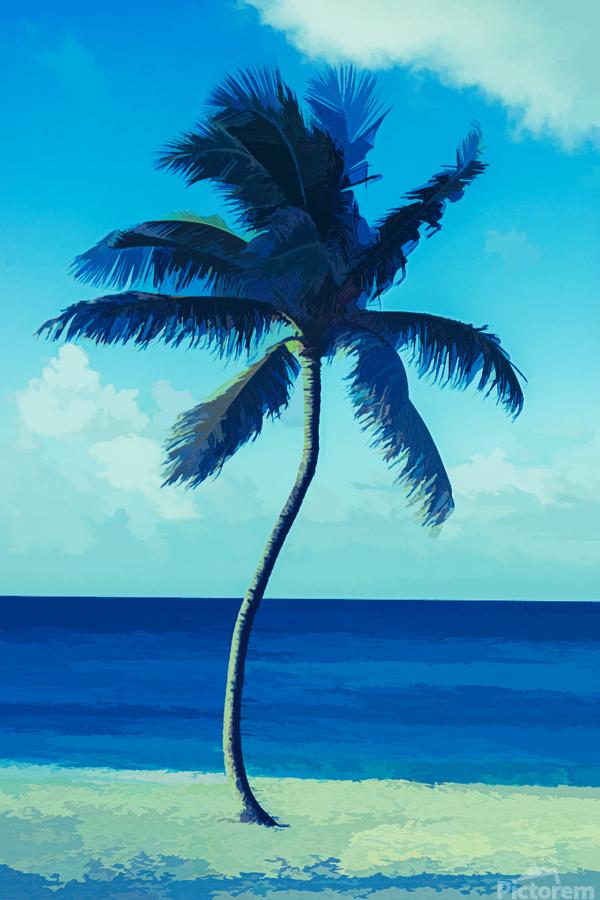 palm color 6  Print
