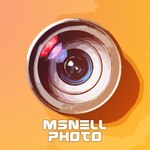 msnell photo