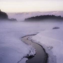 Winters mystique