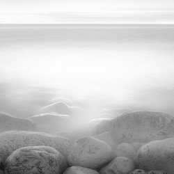 Moog Island