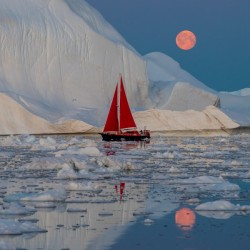 Greenland night