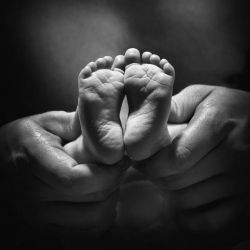 Adult Hands Holding Bare Baby Feet