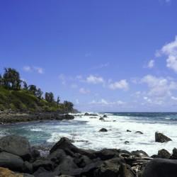 At the Bay in Kauai