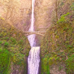 Multnomah Falls Bathed in Sunlight   Columbia River Gorge National Scenic Area   Oregon Pacific Northwest