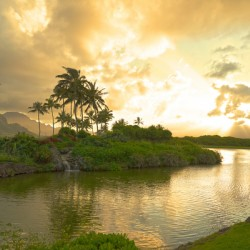 Shadows and Light as the Sun Sets in Kauai 1 of 2