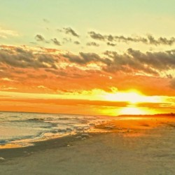 The Carolina Sunset