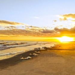 The Summer Sun Sets in the Carolinas