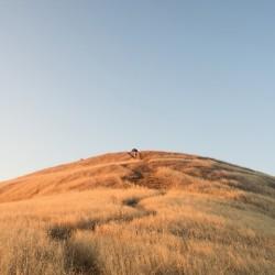 An Uphill Battle