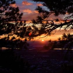 Boulder through the pines