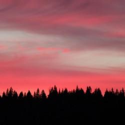 Fire over treeline