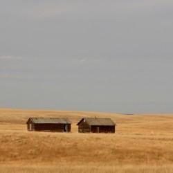 Forgotten barns