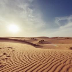 Sandlines
