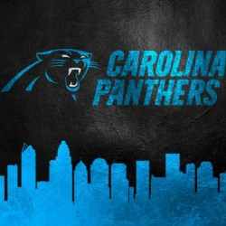 Carolina Panthers Skyline