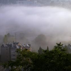 Foggy morning N2
