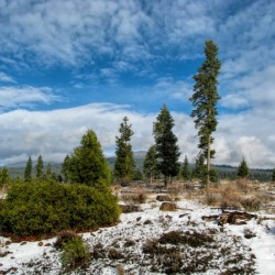 Willow Valley Oregon