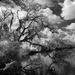 Sebastian Serpentine river