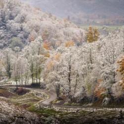Autumn snow on Back Hollow Road Tucker County West Virginia
