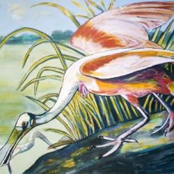 Louisiana Roseate Spoonbill in the Marsh