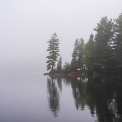 Koshlong Lake Fog
