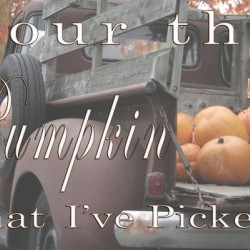 Your the Pumpkin that Ive picked