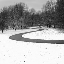 Walk On a Winter Day