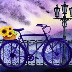 Bicycle And Sunflowers
