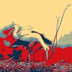 Storks-1