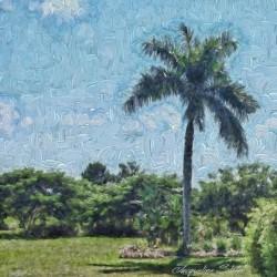 A Monet style Palm