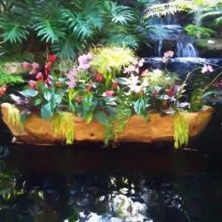 Floating Botanicals