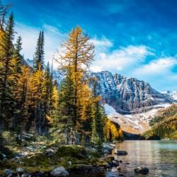 Taylor Lake, Alberta